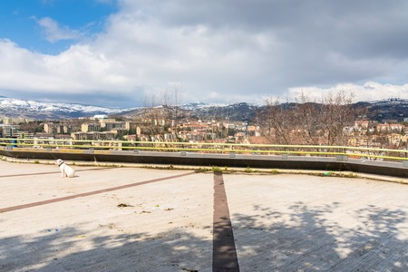 potenza: POTENZA, ITALY - MARCH 13, 2015: dog and panoramic view of city and mountains in Potenza, Italy. Potenza is the highest regional capital city in Italy.