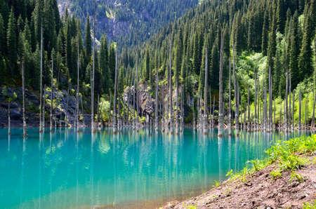 tien shan: Kaindy Lake in Tien Shan mountain system; Kazakhstan Stock Photo