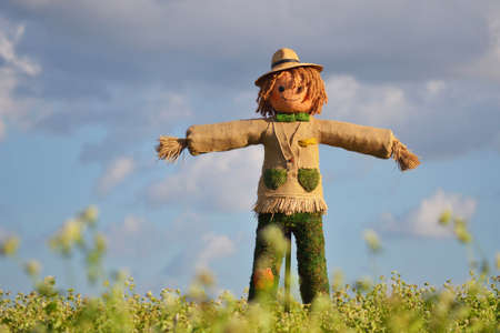 scarecrow: Scarecrow strawman made to guard the fields
