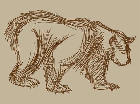 bear sketch Stock Illustratie
