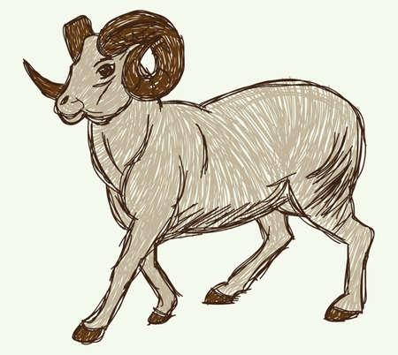 Goat sketch Stockfoto - 26134590