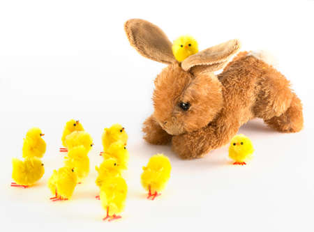 Bunny and chick at Easter