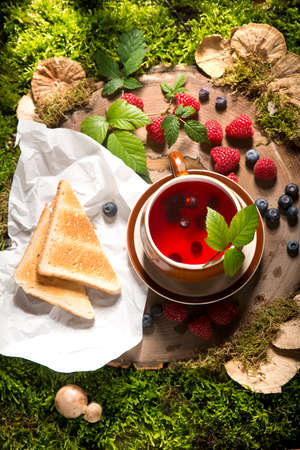 raspberry tea on a stump in the forest mushrooms and berries Standard-Bild