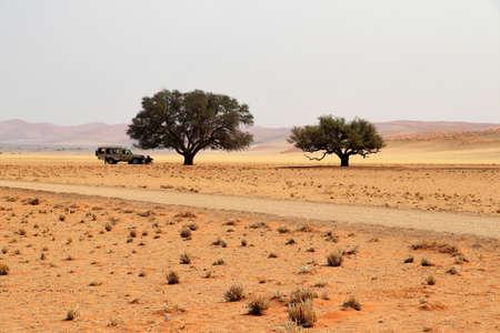 lunch in the beautiful desert Sossusvlei - Namibia Africa