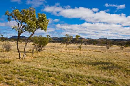 landscape in the outback, australian desert Stock Photo