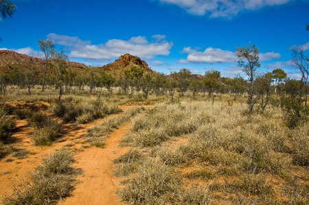 ブッシュとアウトバック、北の道の領土オーストラリア