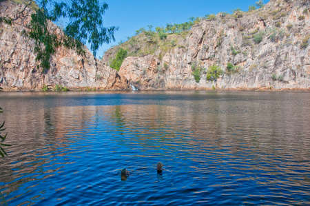 a water pool at Litchfield national park, australia photo