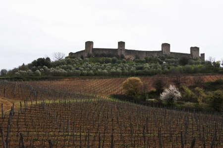 the fort of Monteriggioni next to Siena, Tuscany, Italy Banco de Imagens - 13658717
