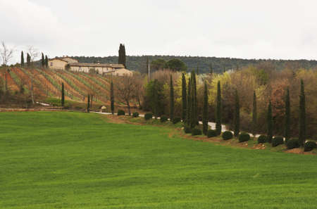 fram and road to the hill in tuscan countryside, Italy Banco de Imagens - 14295759