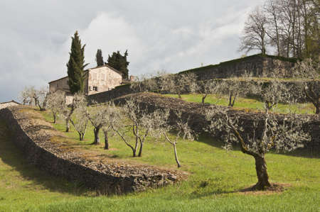 countryside landscape: farmland and countryside in Chianti, Tuscany, Italy