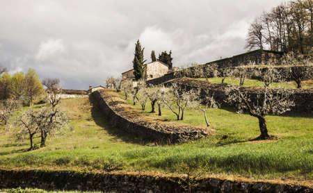 Landbouwgrond en platteland in Chianti, Toscane, Italië Stockfoto - 16959396