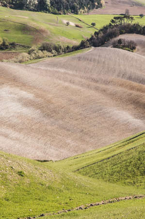 landbouwgrond en het platteland in Chianti, Toscane, Italië Stockfoto