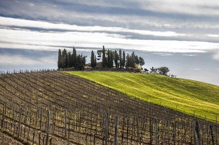 platteland in Chianti, Toscane, Italië Stockfoto