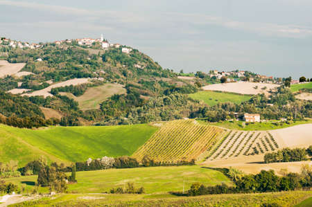 typical: view of the typical italian landscape in Marche