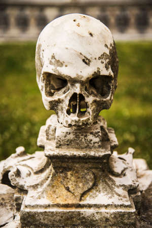 martino: a skull in the garden inside the Carthusian Monastery of San Martino in Naples Italy Stock Photo