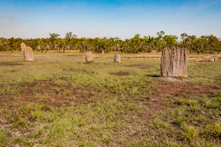 mounds: termite mounds in the northern territory, Australia