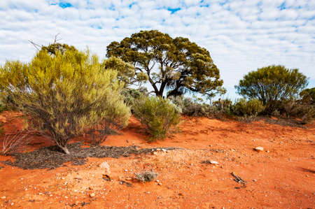 The red center in the Australian desert, the outback in Northern Territory Stock Photo