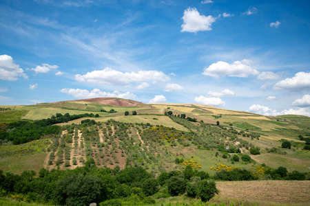 colored landscape in the spring, in Basilicata in southern Italy