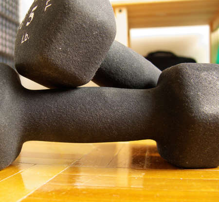 two 5 lbs dumbbells on a hard wood floor