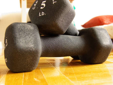 fat burning: two 5 lbs dumbbells on a hard wood floor in a bedroom