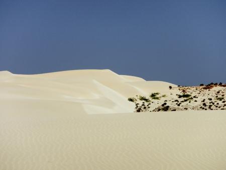 Sanddünen in der Wüste