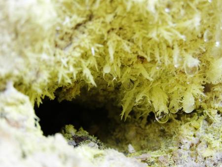 fumarole: Cristales de azufre en fumarola volc�nica