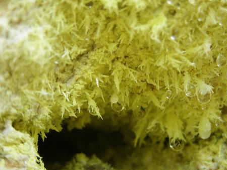 Schwefelkristalle in vulkanische Fumarole Standard-Bild