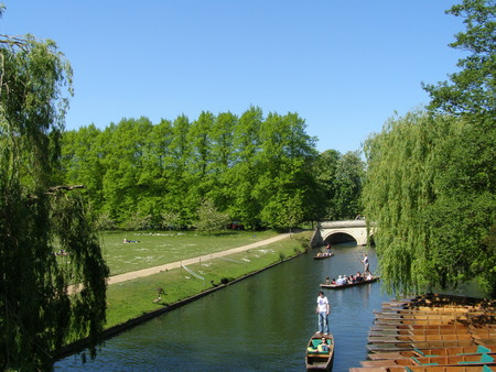cam: Punts on the river Cam
