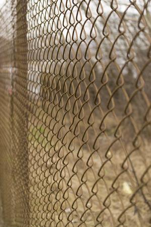 Rabitz net fence pattern
