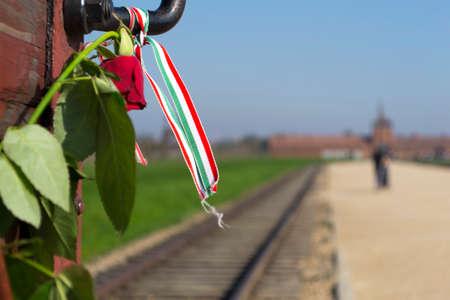 apporter: Train utilis� pour amener les juifs � Auschwitz Banque d'images