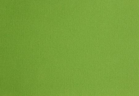 canvass: papel bosque lienzo verde con textura Foto de archivo