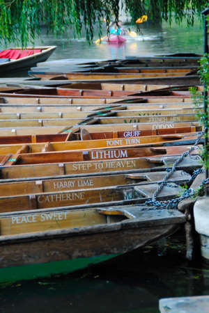 punting: Boats for hire in the River Cam