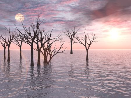 drowned: A group of dead trees standing in water forms a stark contrast to a postcard-perfect pink sunset. Stock Photo