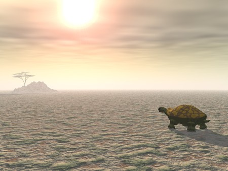 distant: A lone tortoise plods across a parched desert landscape under a blazing sun, toward a distant tree on a hill.