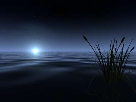 moonrise: A spooky-looking moon rises above the gently rippled surface of a lake, illuminating a band of fog at the horizon. A silhouetted patch of reeds appears in the foreground.