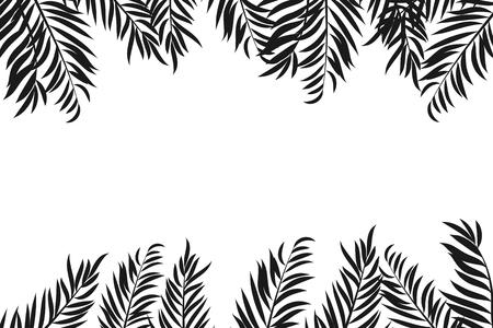 Balck silouhette der Palmeblätter getrennt auf weißem Hintergrund mit Platz für Text.