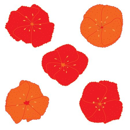 Set of had drawn doodle red flowers isolated on white.  イラスト・ベクター素材