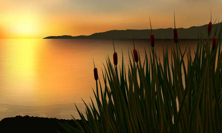 Reeds and rushes on the background of a golden sunset on the water with distant rock.