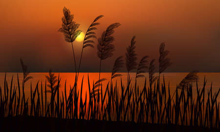 Reeds on the background of a golden sunset on the water.