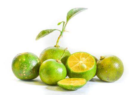 Calamansi Philippine Lemon Stock Photo