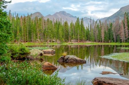 vista de Nymph Lake en Rocky Mt Parque Nacional con reflejos