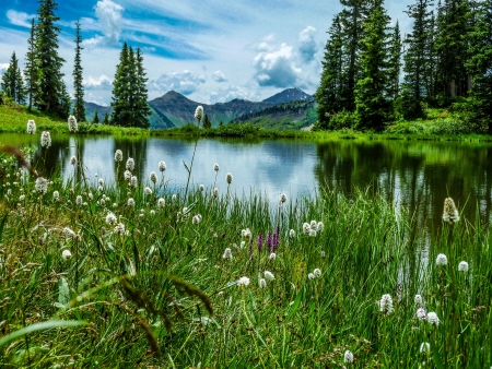 vista: vista of Paridise Lake in Paridise Basin near Crested Butte Colorado Stock Photo