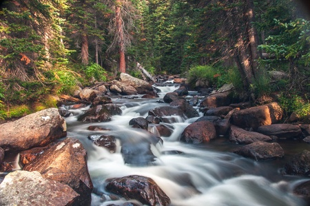 Dreamy mountain stream flowing through forest between boulders