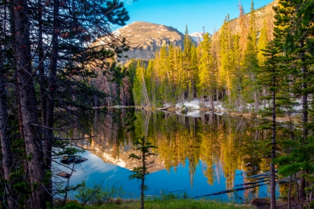 Nymph Lake with reflections at Rocky Mt National Park
