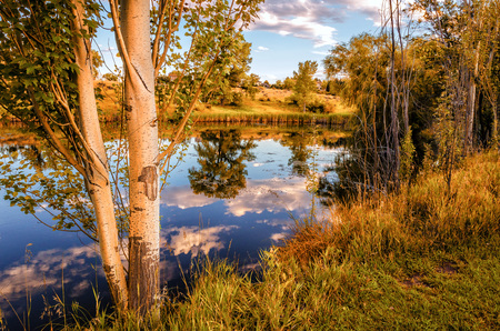 A hint of Autumn is seen in the grasses and reflections of the sky and clouds at Two Ponds Wildlife Preserve in Arvada Colorado
