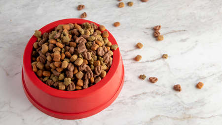 Dog kibble in a red bowl, on a white marble base