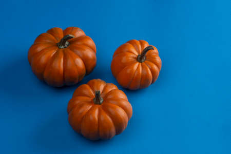 Mini pumpkins with colored background
