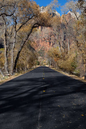 Scenic road in the Canyons during a sunny day in Fall Season. Taken in Zion National Park, Utah, United States. Imagens