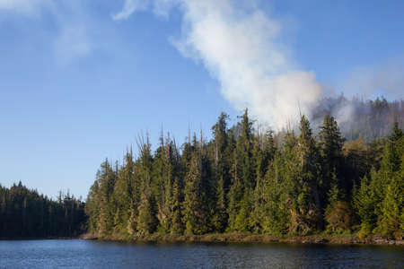 BC Wild Fire during a hot sunny summer day. Taken near Port Alice, Northern Vacouver Island, British Columbia, Canada. 版權商用圖片 - 126936195