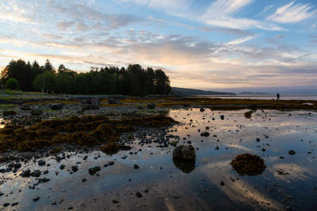 Beautiful view of a rocky beach during a vibrant cloudy summer sunset.Taken in Port Hardy, Northern Vancouver Island, BC, Canada. 版權商用圖片 - 126936823
